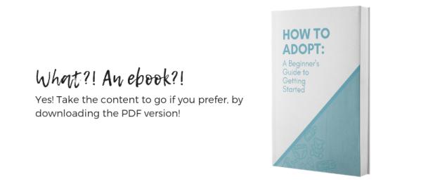 adoption guide ebook insert