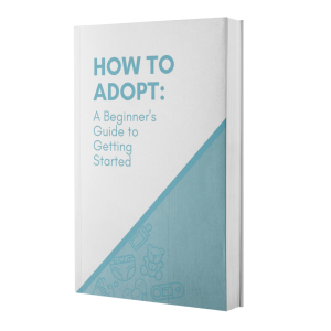 how to adopt book